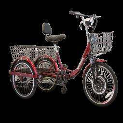 EW-29 Electric Trike