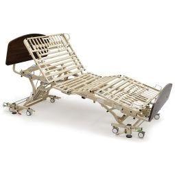 Alterra Maxx Care Bed