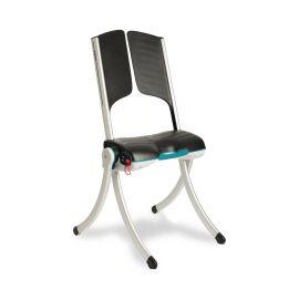 Raizer Mobile Lifting Chair